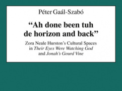 "Book Review – ""Ah done been tuh de horizon and back"""